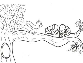 Free Spring Summer Coloring Pages From Craft Elf - coloring pages birds nest